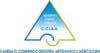 Logo Camera di commercio del VCO